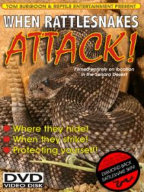 When Rattlesnakes Attack